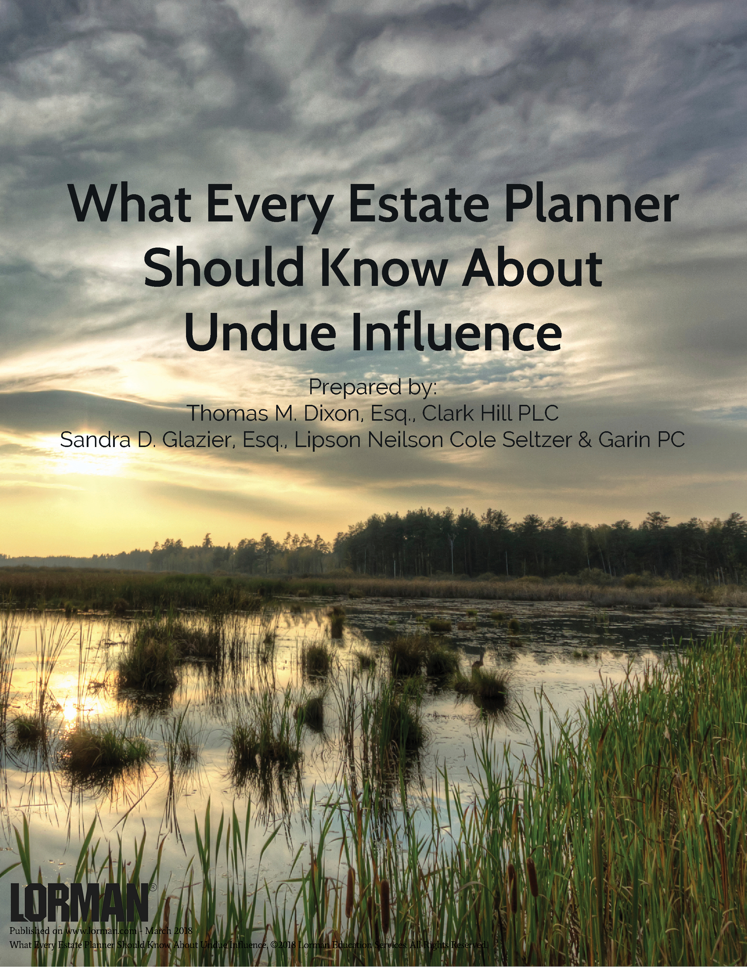 What Every Estate Planner Should Know About Undue Influence