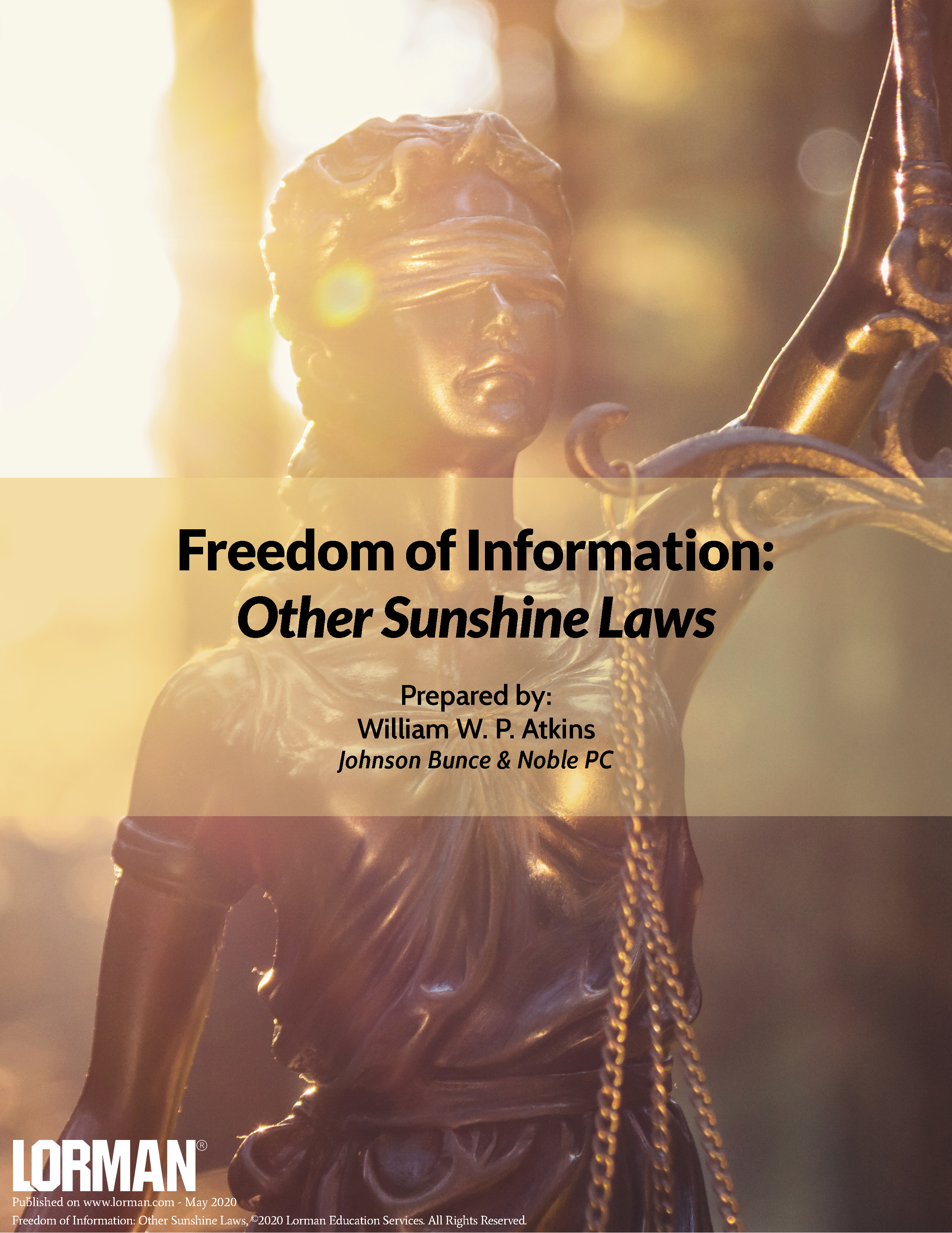 Freedom of Information: Other Sunshine Laws