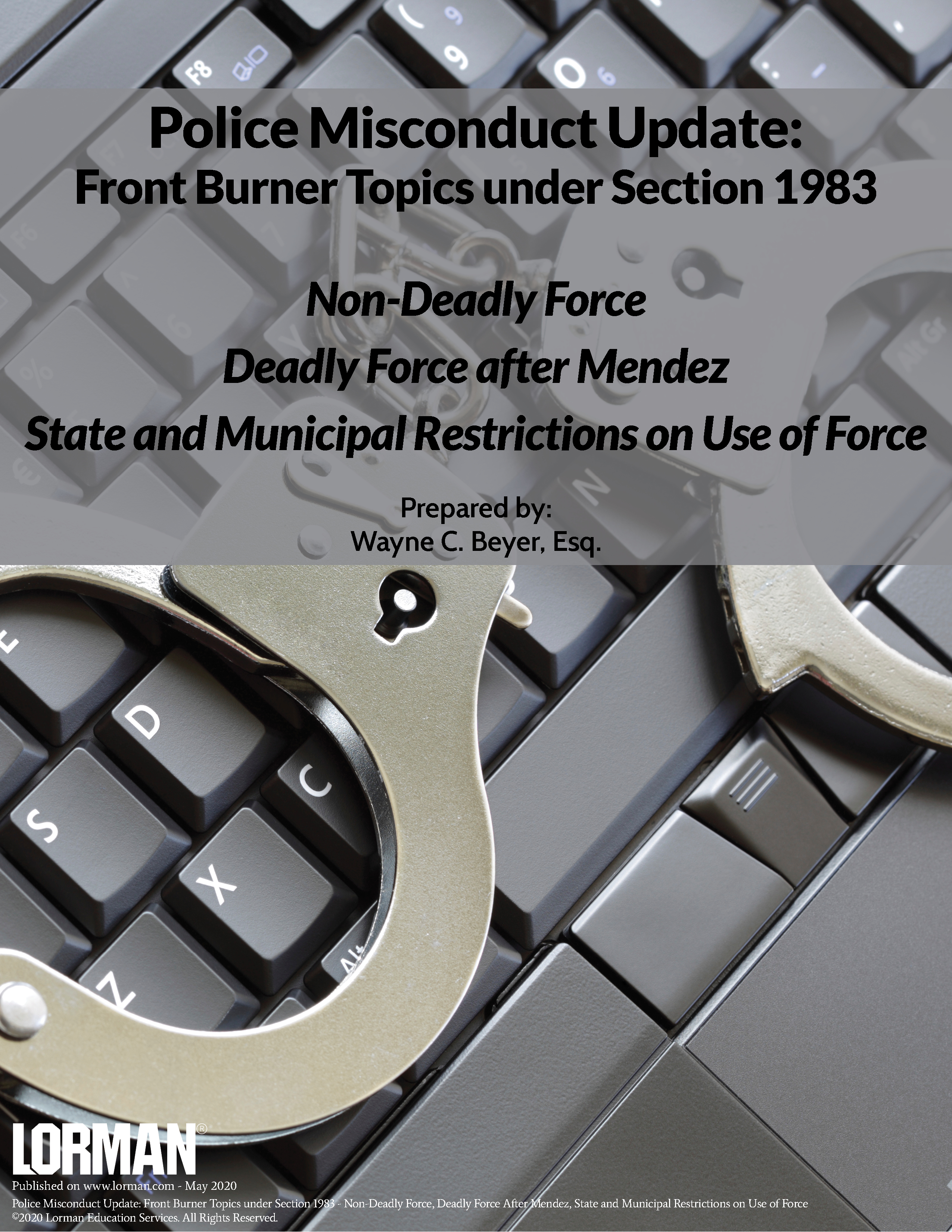 Police Misconduct Update: Non-Deadly Force and Deadly Force After Mendez